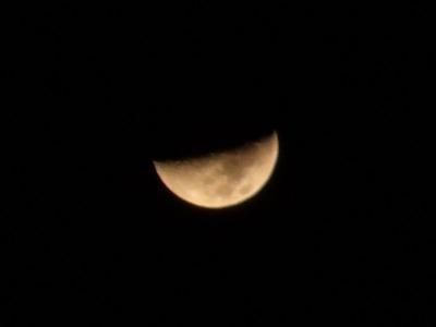 Moon_20120130